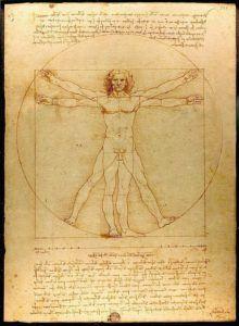 The Human Body, Leonardo Da Vinci