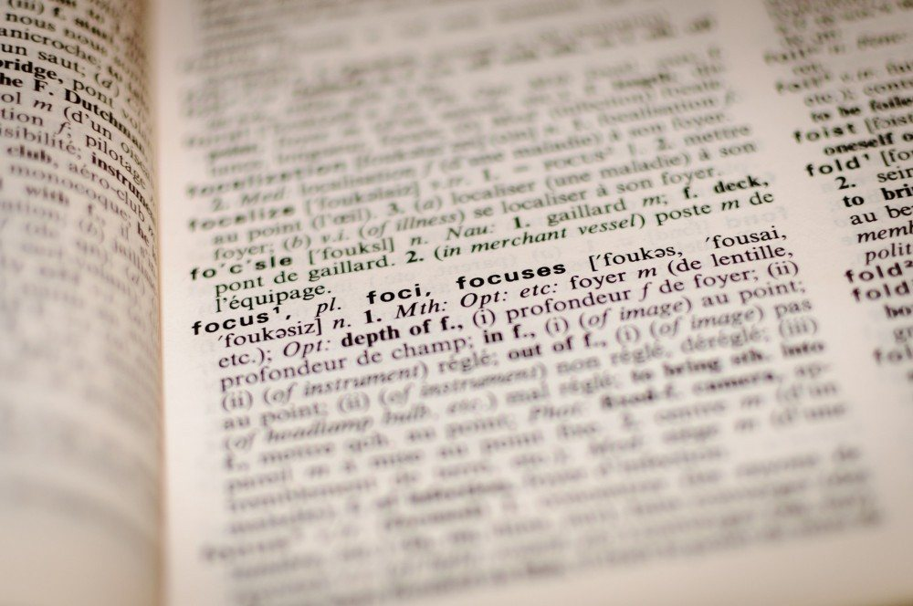 Focus Dictionary Definition