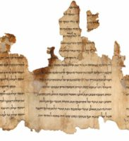 Portion of the Temple Scroll, labeled 11Q19, one of the longest of the Dead Sea Scrolls.