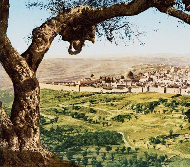 Learn Hebrew, the Language of the Bible: Israeli Landscape